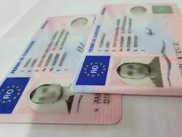 Pasaport/Buletin romanesc